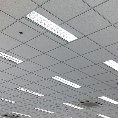 Suspended Ceiling Services